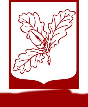 Surrey Rugby logo